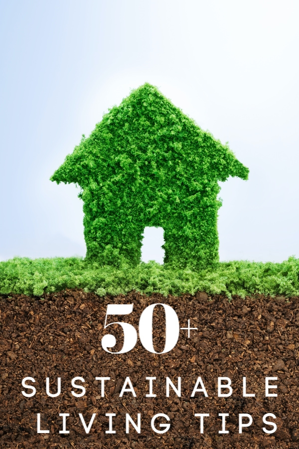 Grass in shape of house with dirt under it sustainable living tips in text