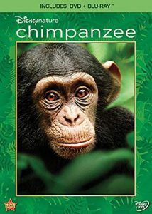 Cover photo for Disneynature Chimpanzee