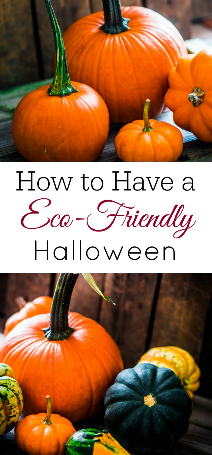 How to have an eco-friendly Halloween, Green Halloween, Waste-Free Halloween, Natural Halloween
