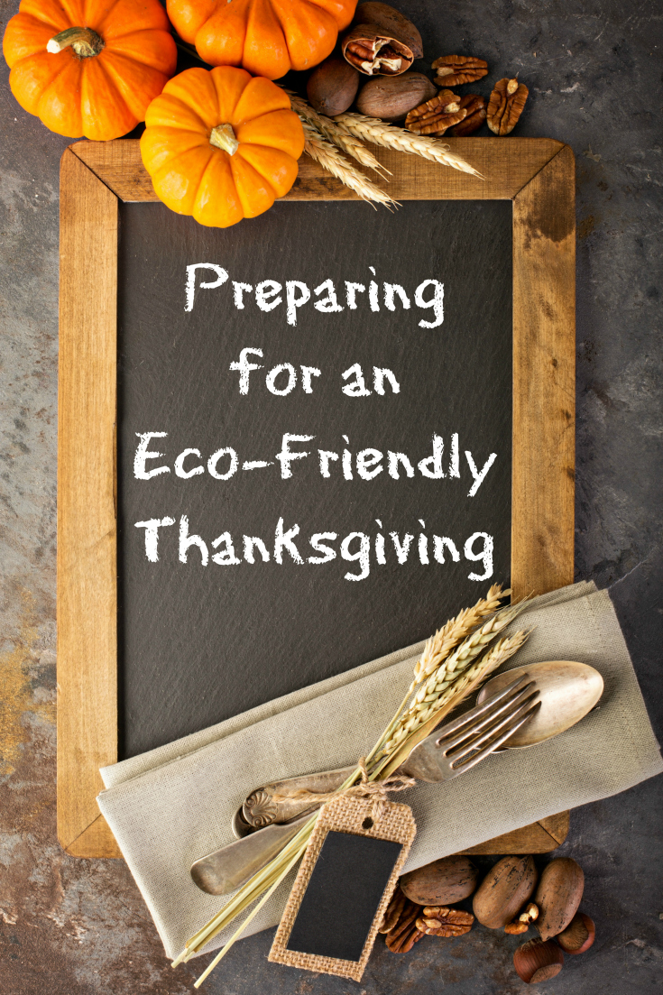 Have an eco-friendly Thanksgiving this year! It's not as hard as you'd think.