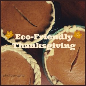 Preparing for an Eco-Friendly Thanksgiving