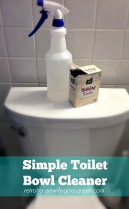 Simple Toilet Bowl Cleaner | Retro Housewife Goes Green