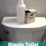 Simple Toilet Bowl Cleaner