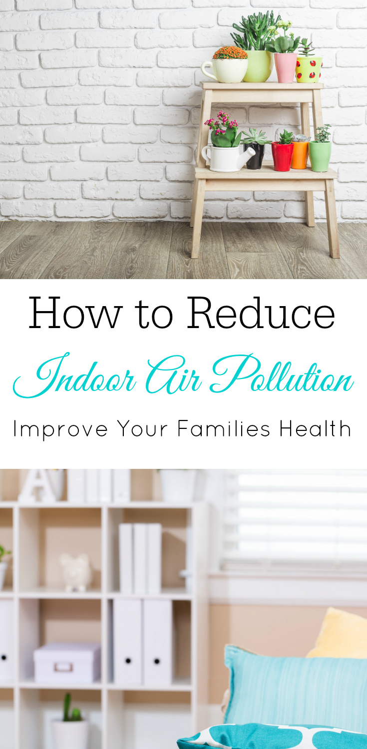 Reduce indoor air pollution, plants for better air, air filters, air quality, house plants