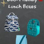 Back to School: Eco-Friendly Lunch Boxes