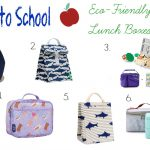 Non-Toxic Eco-Friendly Lunch Boxes