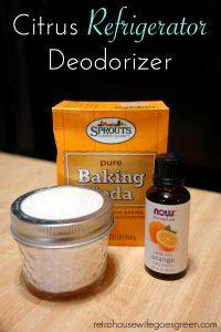 Easy DIY Citrus Refrigerator Deodorizer