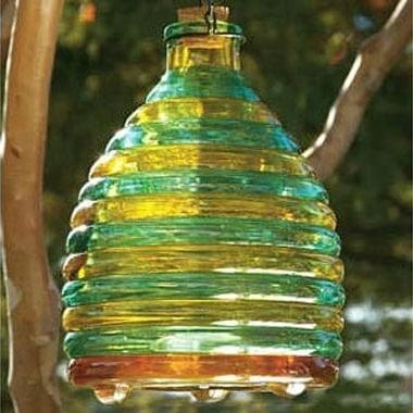 Glass Wasp Trap