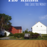 Lessons from the Amish That Save You Money