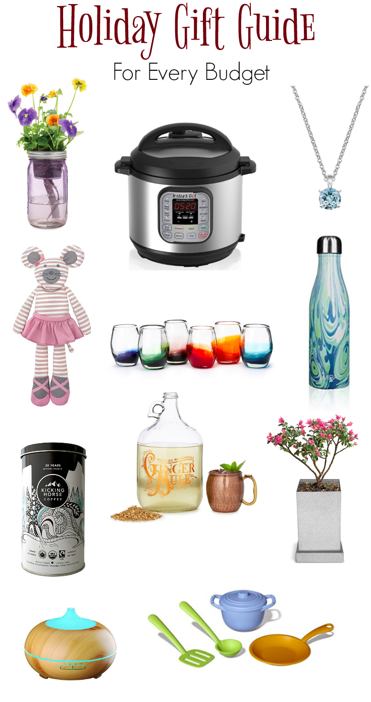 Holiday gift guide, gifts for everyone on your list and for every budget!