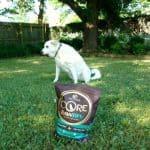 Feeding Your Dog Raw Food Safely