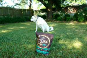 bag of dog food and dog in background