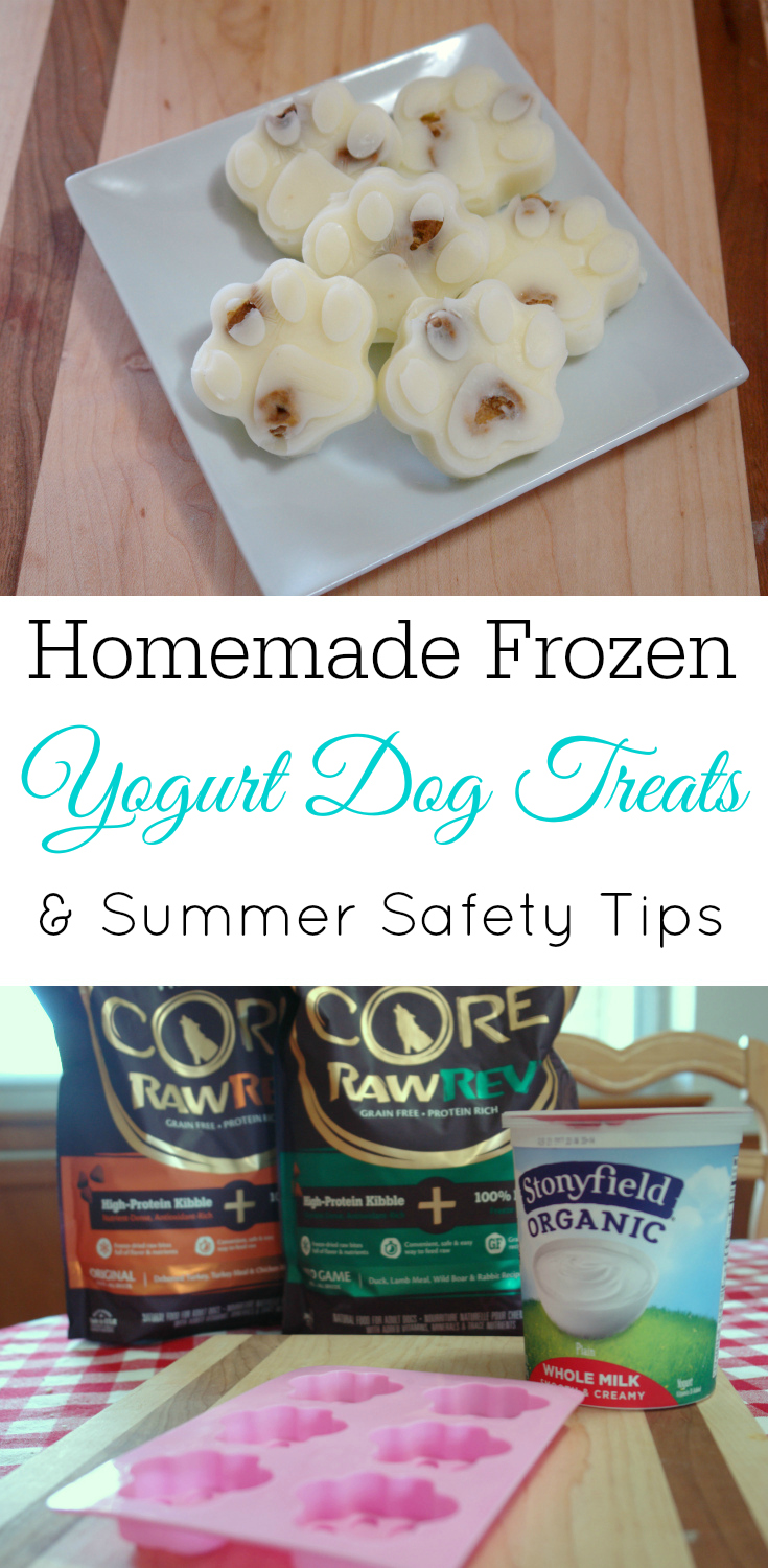 Homemade frozen yogurt dog treats, copy-cat frosty paws, homemade dog treat, keep your dog safe this summer #sponsored #WellnessPetFood @WellnessPetFood