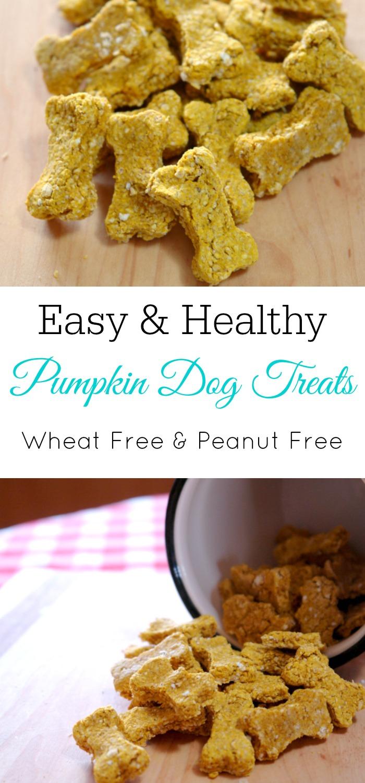 Homemade dog treats, homemade pumpkin dog treats, easy dog treats