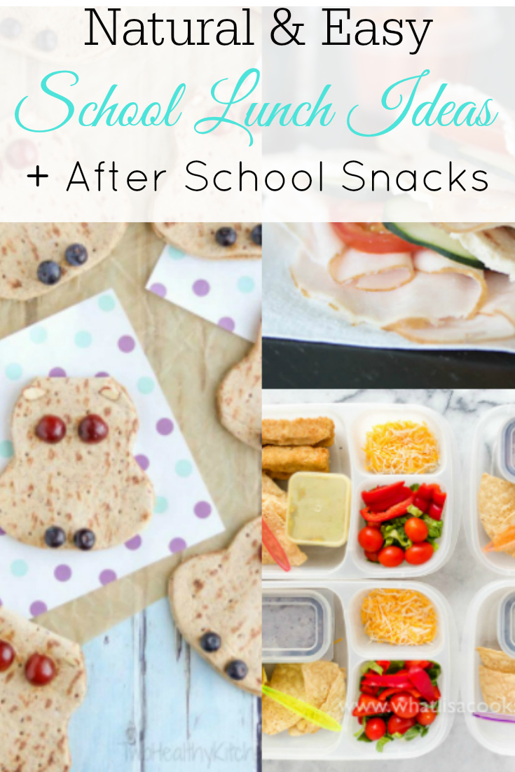 collage of school lunches
