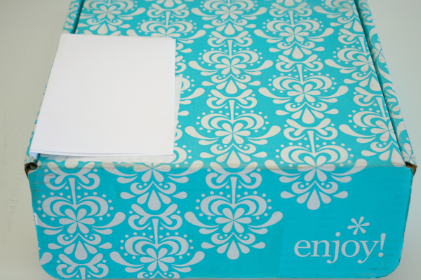 Aqua Erin Condren box