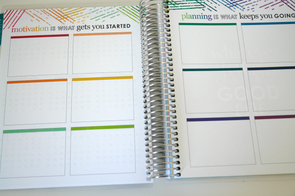goal setting page from Erin Condren planner