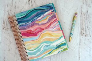 Erin Condren Lifeplanner colorful layers with matching pen