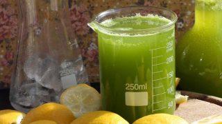 Sparkling Kale Lemonade