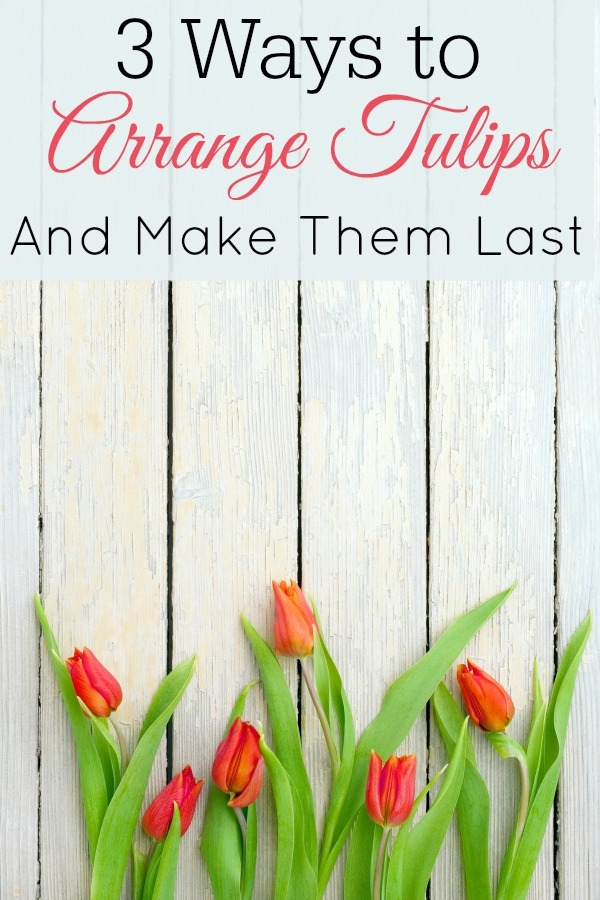beautiful red tulips over white wooden textured background