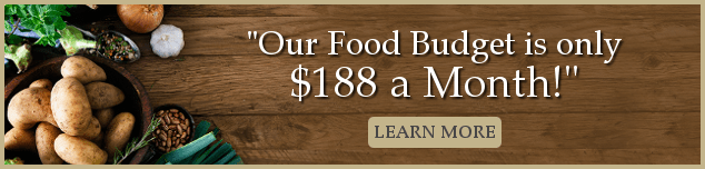 """""""Our Food Budget is $188 a month! Learn more"""""""